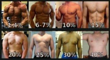 體脂肪為何每個人看起來都不同