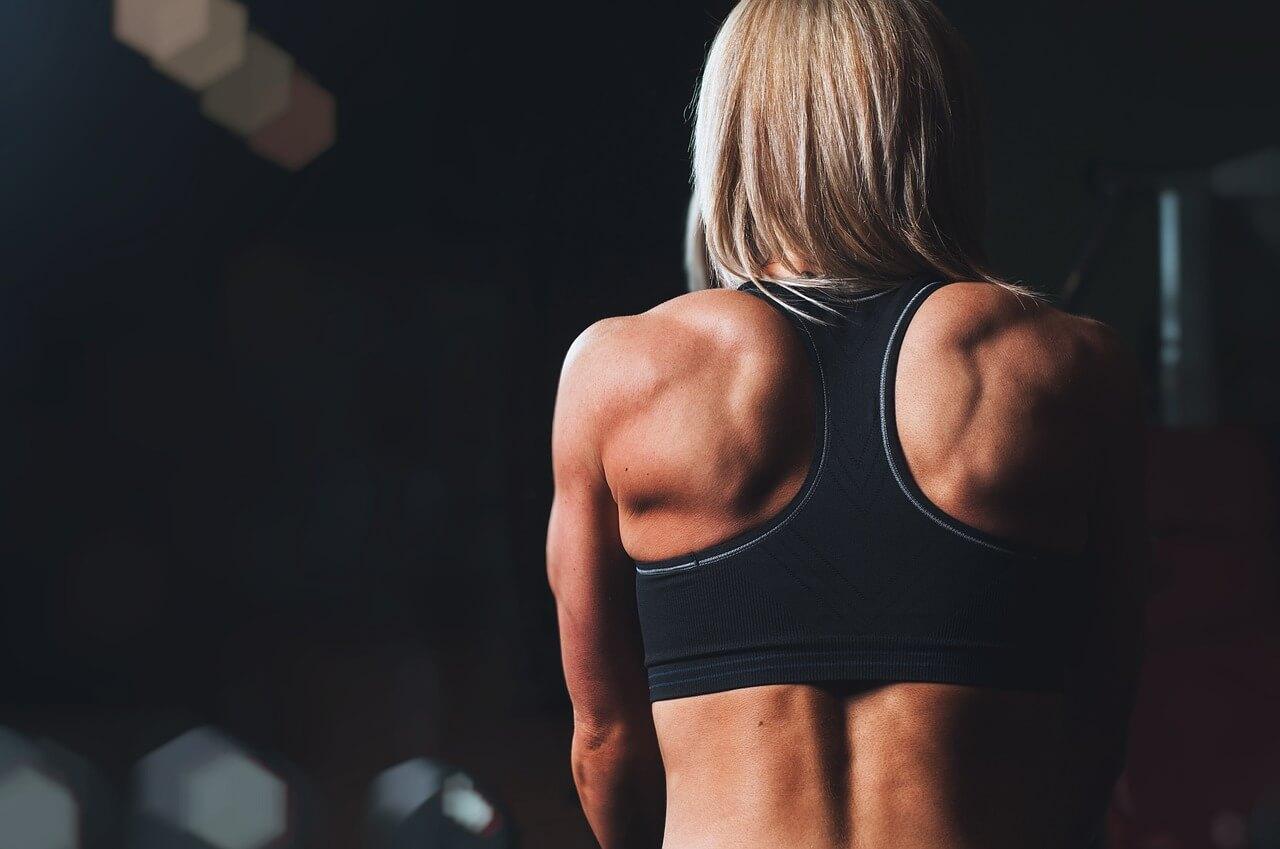 胰島素並不會有太多肌肉合成的幫助