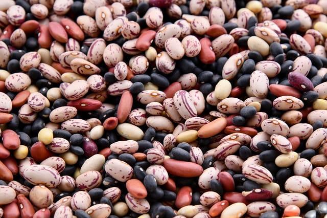 綠拿鐵擁有健康的植物性蛋白質