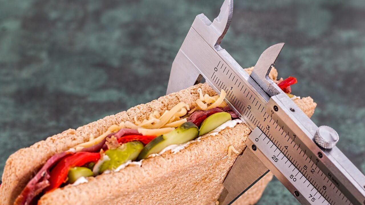 基礎代謝率